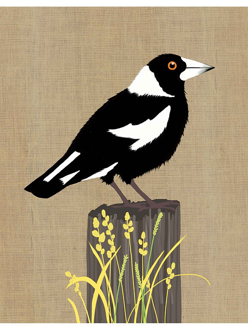 Magpie on hessian background