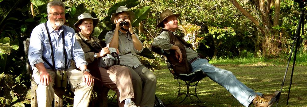 Birding in Otun - Quimbaya