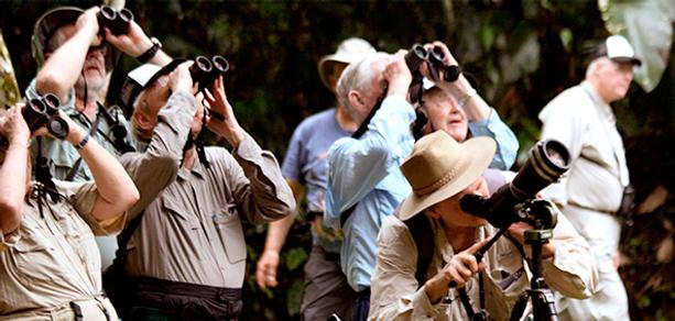 Birding Tours Colombia