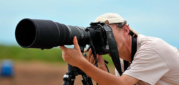 Photo Wildlife Tours