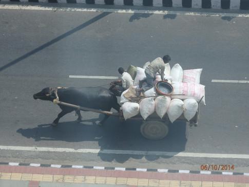 South Delhi