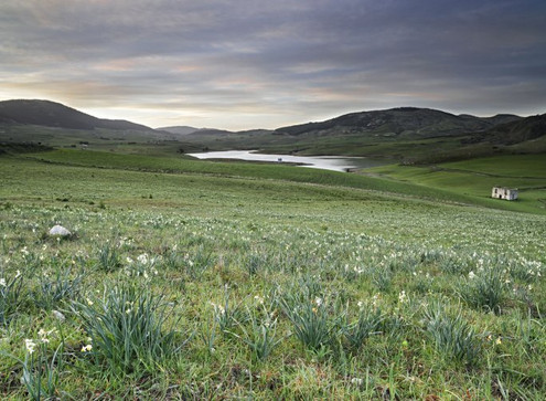 lago castronovo monti sicani.jpg