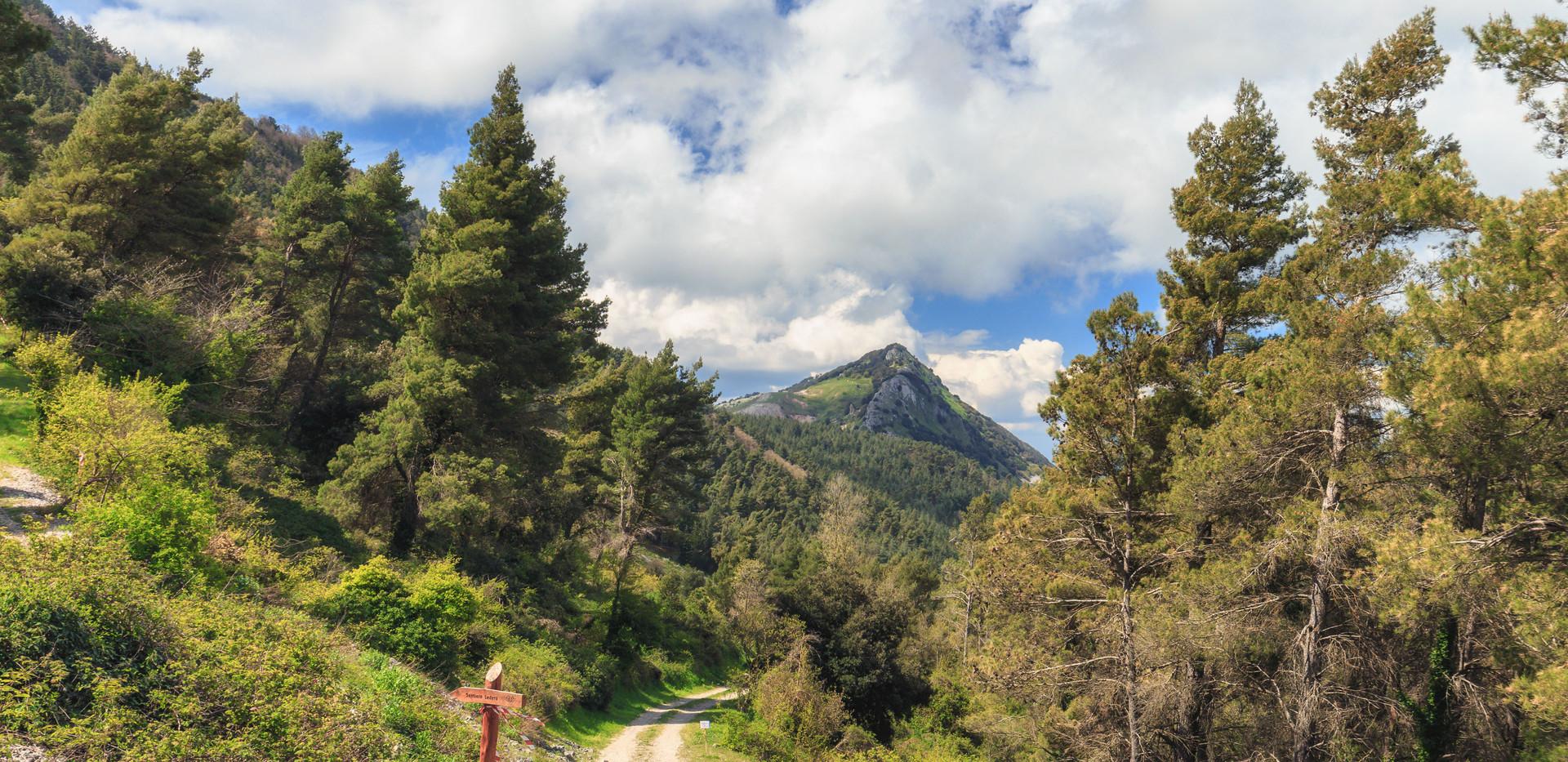 Trekking Cammarata.jpg