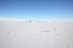 Stellar Axis: Antarctica