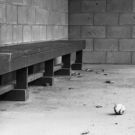 Baseball During Pandemic, Albany NY