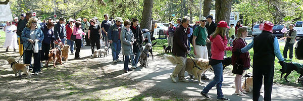 walk for dog guides.jpg