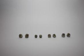 Earrings Series1