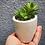 Thumbnail: ROUND Small Planter