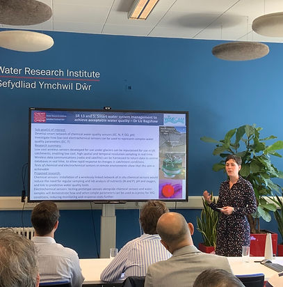 Our researcher, Liz Bagshaw, presents her research to DCWW staff at one of our many stakeholder events