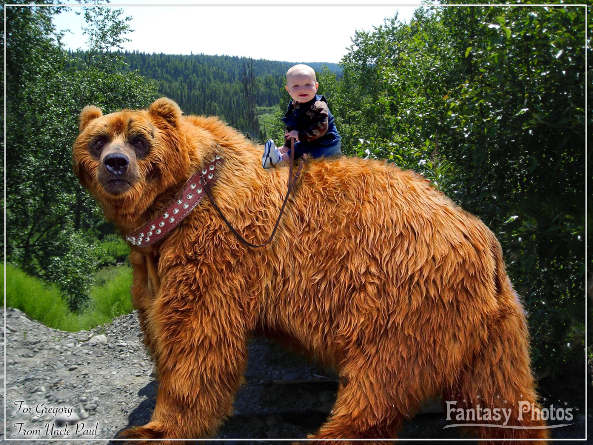 Fantasy Photos-Baby Riding Bear