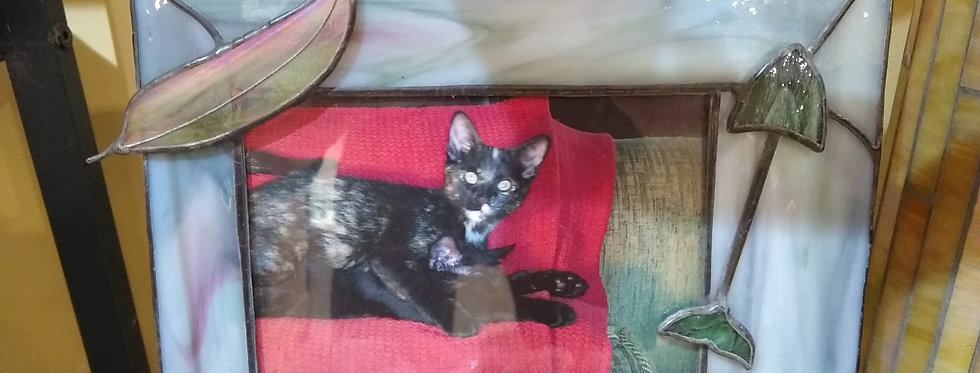 Pusser Picture Frame