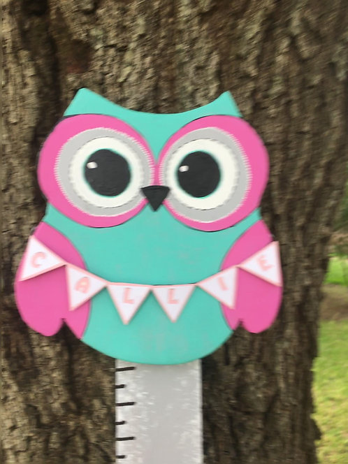 Baby Owl growth stick Girls nursery personalized