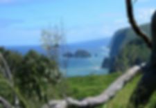 Pololu Valley Lookout Hawaii