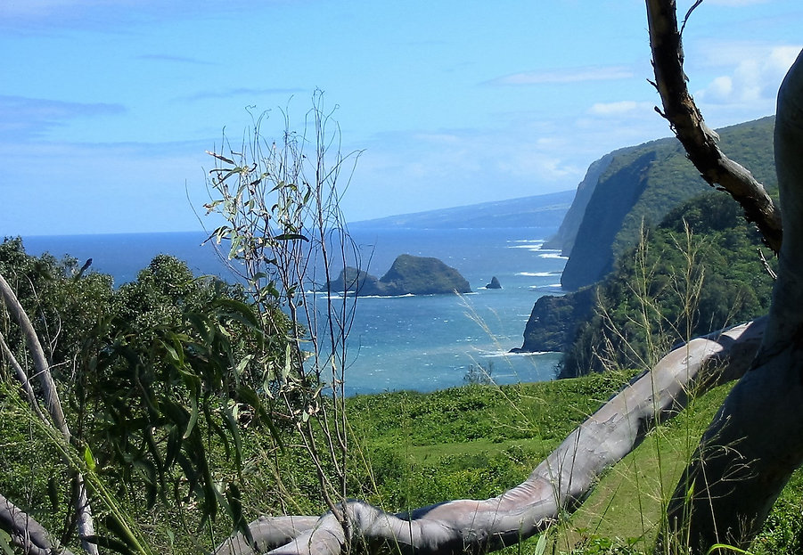 Pololu Valley Lookout Hawaii