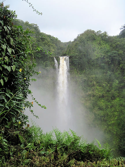 Akaka Falls Hilo Big Island Hawaii