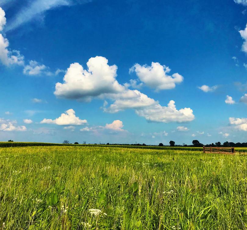 Loda-Landscape-Web.jpg