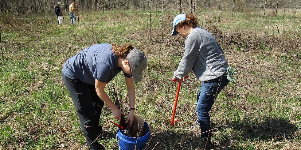 Volunteer to Plant Native Trees at Warbler Ridge Red Barns