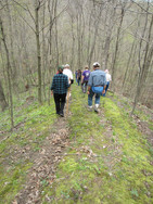 warbler walk.jpg