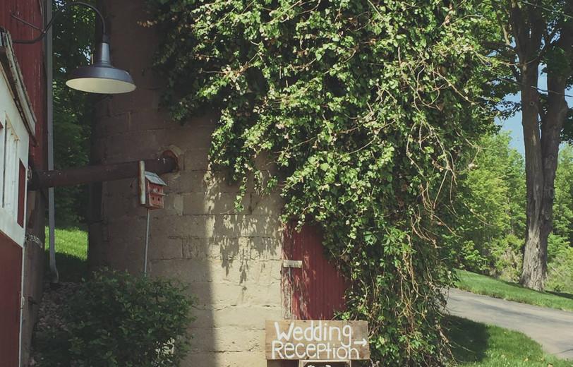 vine covered silo