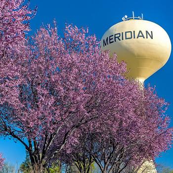 Watertower in Meridian1-M.jpg