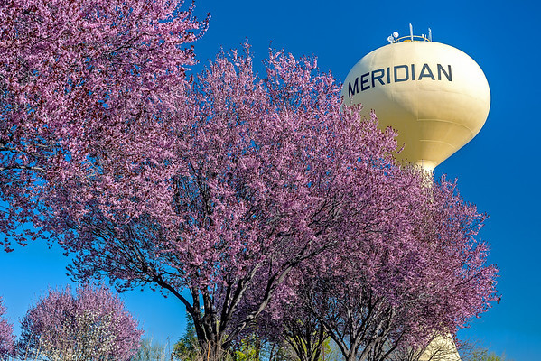 Watertower in Meridian1-M.jpg