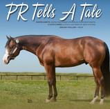 PR Tells A Tale Flyer Front 2013-425crop