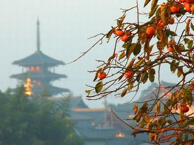 日本の四季  秋は月.冬は雪