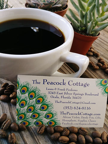 chelsea coffee cup and peacock cottage info