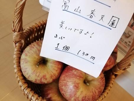 採りたてりんご!アロマトリートメント好きなセラピストブログ