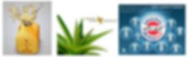 Forever-und-Aloe-Produkte.jpg