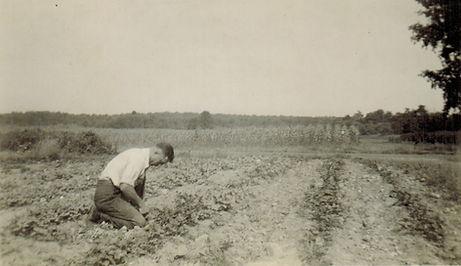 Grandpa Sowing Field.jpg