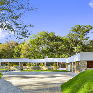 Modern in the Woods