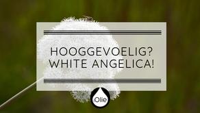 De olie voor HSP'ers: White Angelica