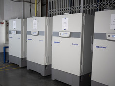 Congeladores específicos para armazenar vacinas contra o Covid-19 chegaram na Irlanda