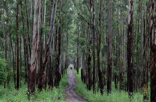 Places in Gokarna