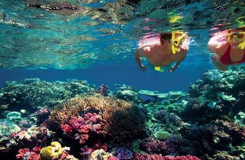 snorkeling in gokarna