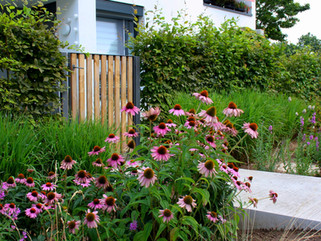 Gartenbau und Landschaftsbau