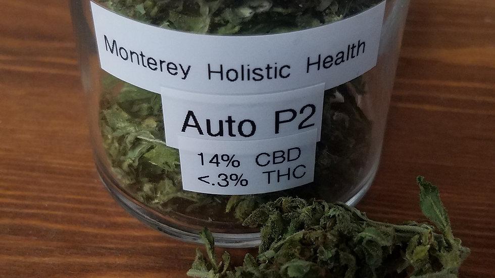 Auto P2 1/4 ounce
