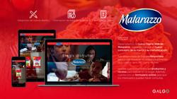 Galgo pagina WEB Matarazzo
