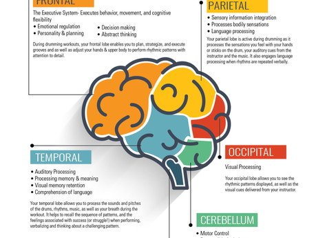 Your Brain On Drumming