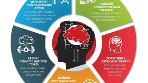 Harnessing the POWER of Your Brilliant Brain
