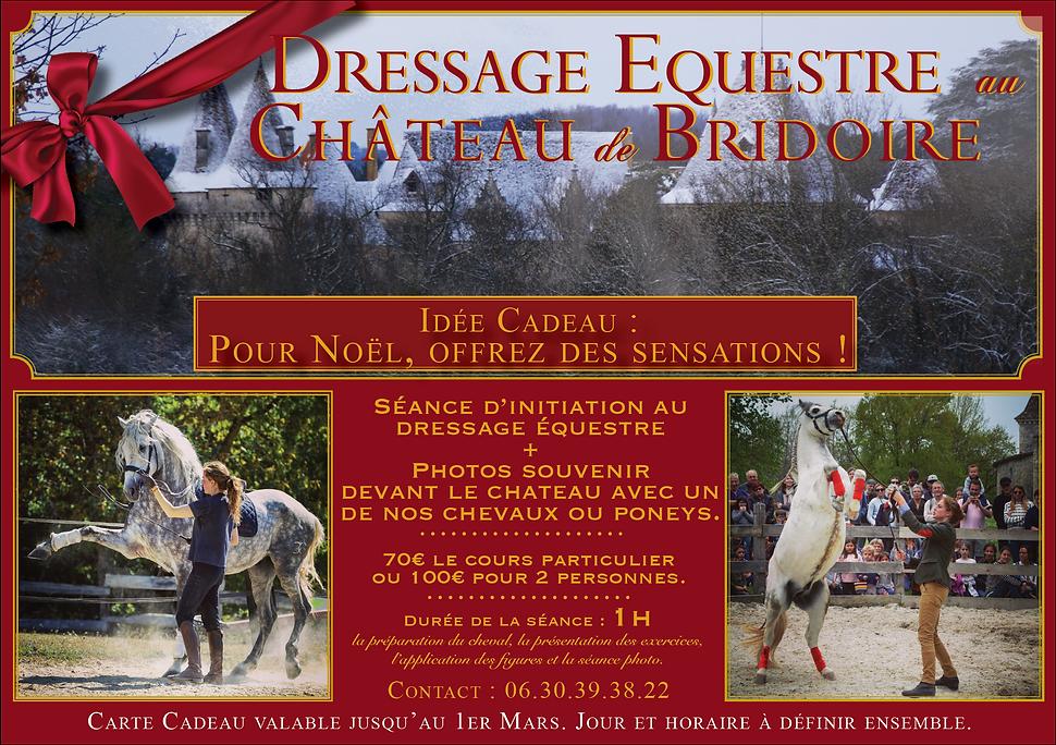 Dressage_équestre_Bridoire.png