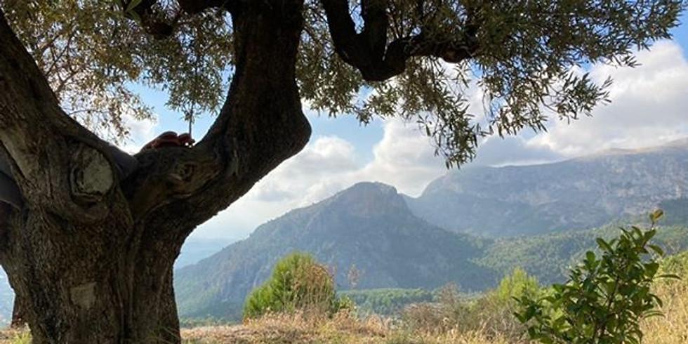 Guadalest September retreat