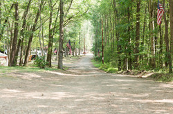 View of Campground Drive from Barn