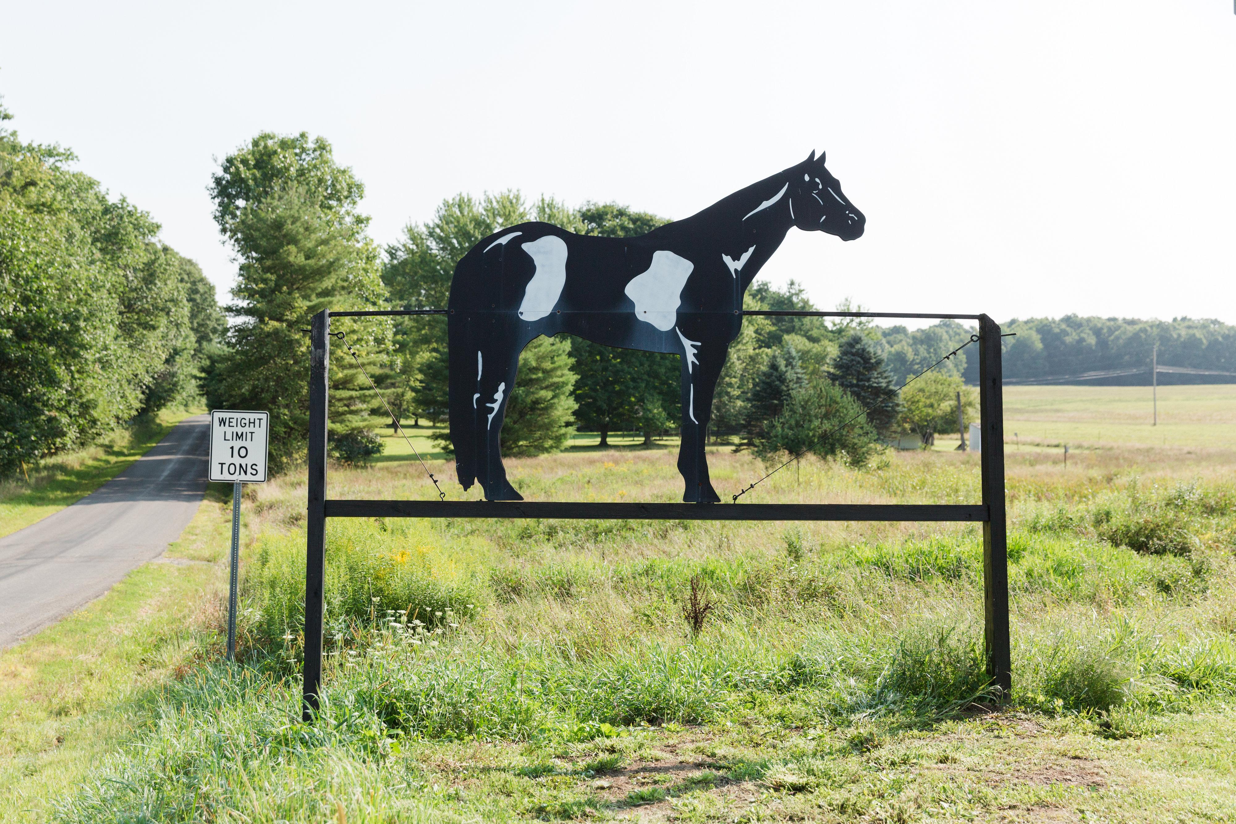 Horse Sign 337 & Economite Rd