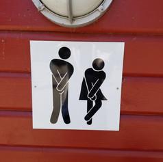 International Toilet Sign ?