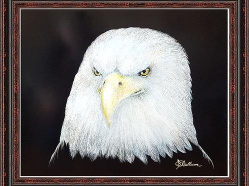 BALD EAGLE (SCRATCH BOARD ORIGINAL)