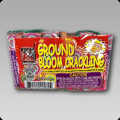 Ground Bloom Crackling