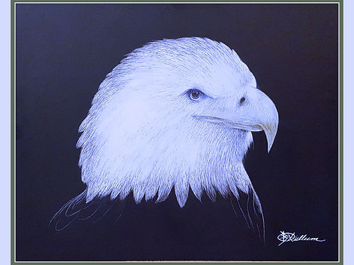 BALD EAGLE II (LTD PRINT OF / 5