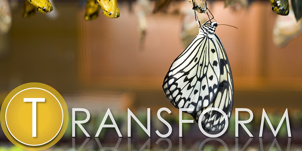 TRANSFORM Workshop - Overview and Practice of the TRANSFORM Track With Fred Tan